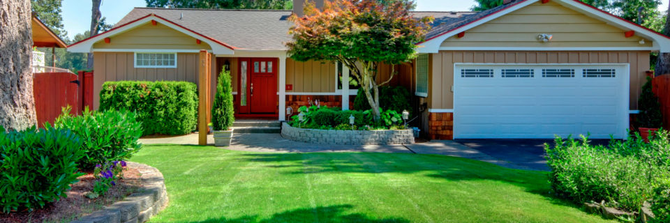 Full Service Lawn Care