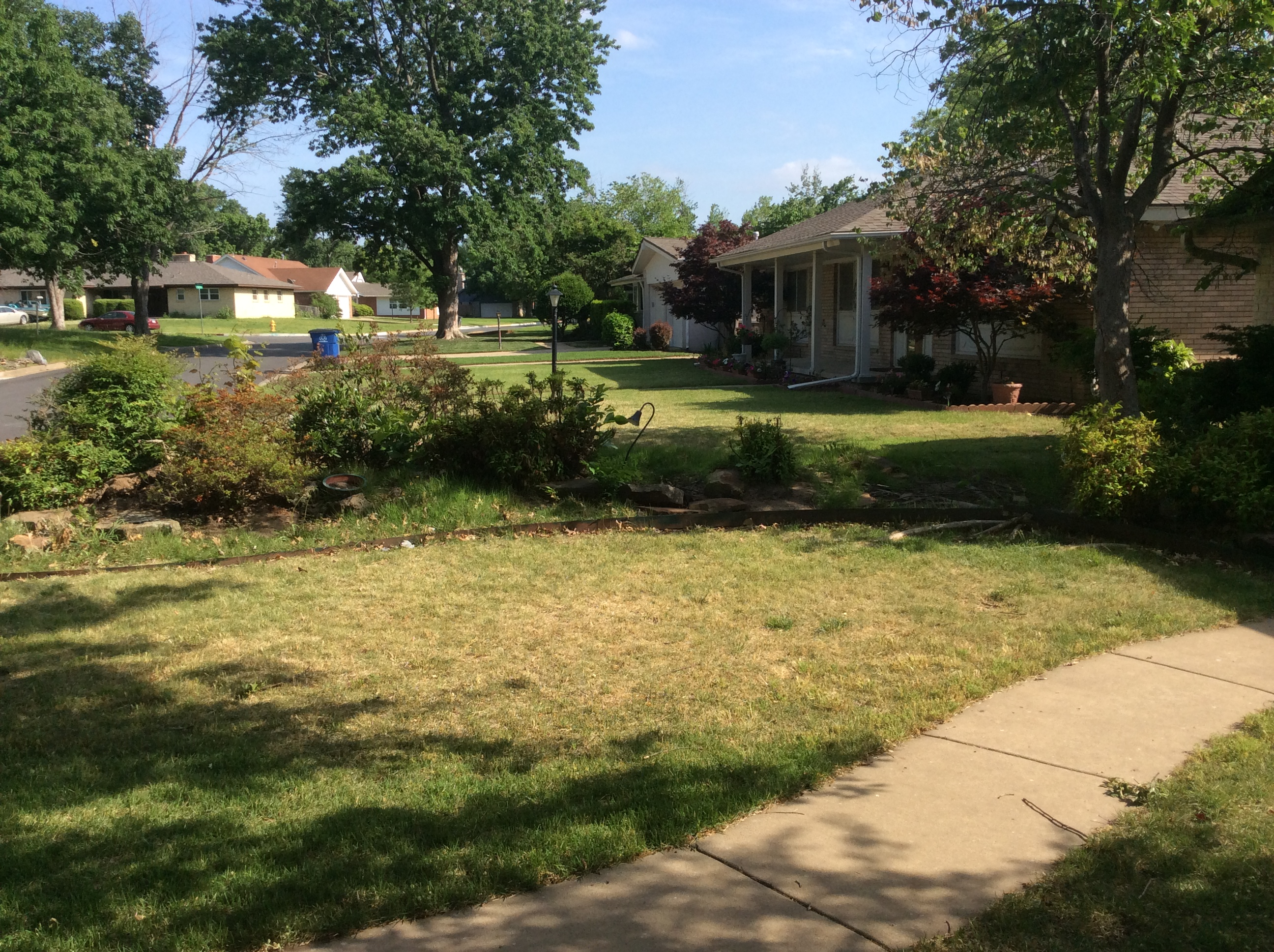 Lawn care henderson tree and landscape for Tree and garden services